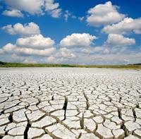 as dry as